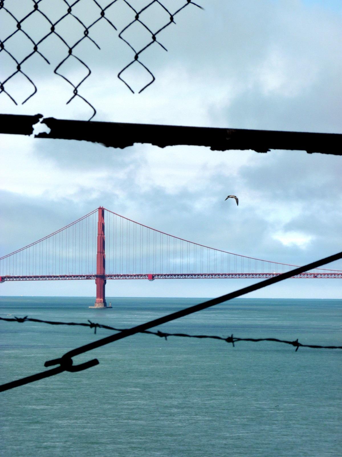 Alcatraz USA Bild